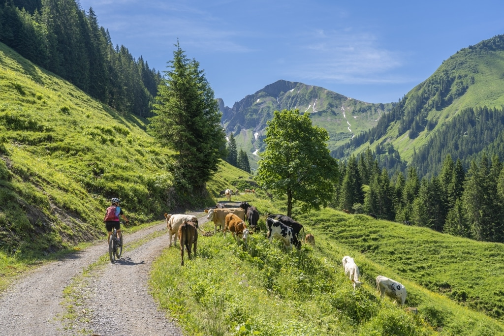 Das Hotel Schrofenstein in Landeck ist der perfekte Zwischenstopp bei Ihrer Radtour durch Tirol