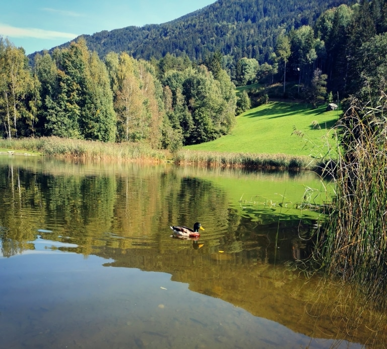 Der Tramser Weiher ist ein Geheimtipp für Wanderer im Tiroler Oberland